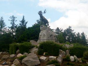 Newfoundland Park